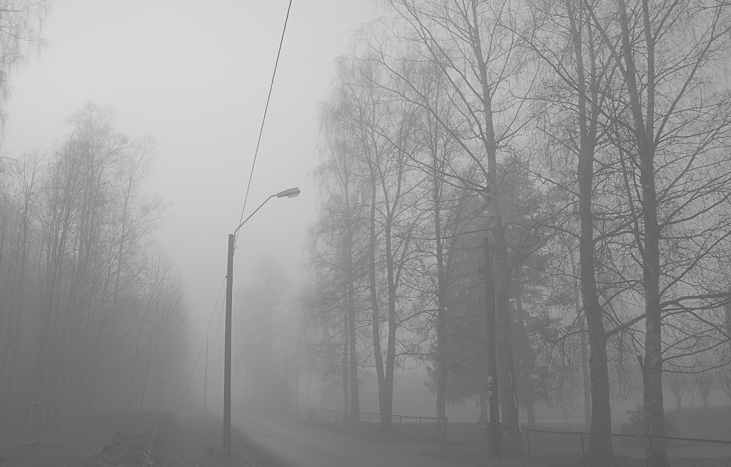 Or at least electricity wires, which amounts to the same thing. This weekend the weather was clear down by the river where we live but the fog was thick as pea soup up by the church on the top of the hill. Still, at least it's not snowing. Yet.